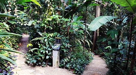 Taman Tugu 3